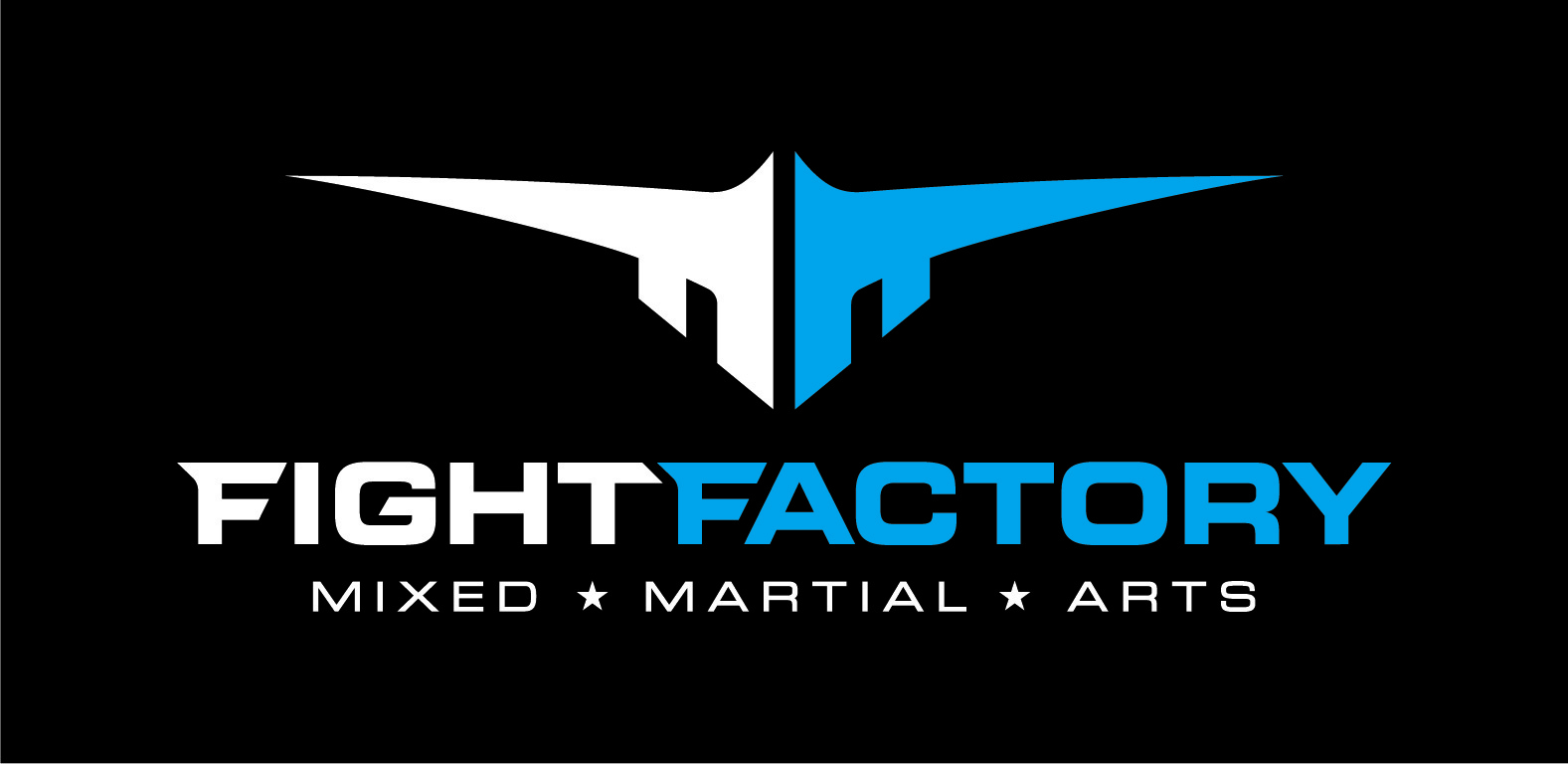 fight factory lausanne